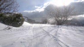 Blizzard in de winter op bosweg met veel sneeuw Zon in de wolken stock videobeelden