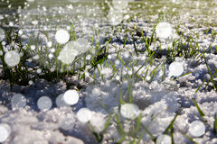 Blizzard in der Landschaft Lizenzfreies Stockbild