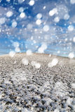 Blizzard in der Landschaft Stockfotos