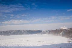 Blizzard in der Winterwiese Lizenzfreie Stockfotografie