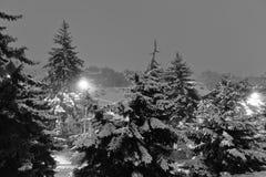 blizzard Diese Abbildung kann für Ihre Auslegung benutzt werden Pyatigorsk, Russland Stockfotos