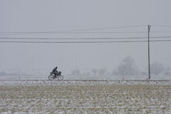 Blizzard in the fields. Poland Stock Images
