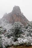Blizzard am Garten der felsigen Berge Gottcolorado springs w?hrend des Winters umfasst im Schnee lizenzfreie stockbilder