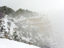 Blizzard in Grand Canyon Royalty Free Stock Image