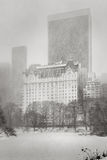 Blizzard hits NYC - Winter storm in Central Park. Winter scene in New York. Snowstorm over Central Park and Manhattan buildings. Black & White Stock Photo