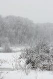 Blizzard im Februar Stockbild
