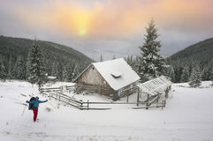 Blizzard lonely house. Ukraine, Carpathians strong snowstorm covered the mountains of sugar crust, like frosting. A lone traveler in the majestic wild winter Stock Photos