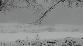 Blizzard na exploração agrícola fotos de stock royalty free