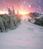 Blizzard nachher Stockbild