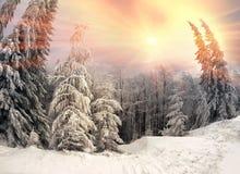 Blizzard nachher Stockfotos