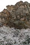 Blizzard no jardim das montanhas rochosas de Colorado Springs dos deuses durante o inverno coberto na neve imagem de stock