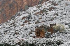 Blizzard no jardim das montanhas rochosas de Colorado Springs dos deuses durante o inverno coberto na neve imagem de stock royalty free