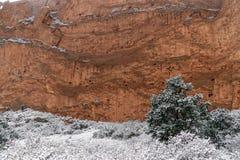 Blizzard no jardim das montanhas rochosas de Colorado Springs dos deuses durante o inverno coberto na neve fotografia de stock