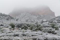 Blizzard no jardim das montanhas rochosas de Colorado Springs dos deuses durante o inverno coberto na neve foto de stock royalty free