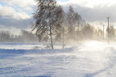 A Blizzard of okolitsej. The evening turned into a snowstorm for the village okolitsej Stock Image