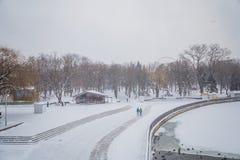 blizzard Schneesturm im Waldstarken Schneesturm im Park Schneeco Stockfotografie