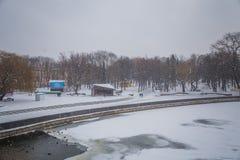 blizzard Schneesturm im Waldstarken Schneesturm im Park Schneeco Lizenzfreie Stockfotos