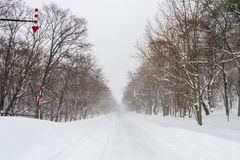 Blizzard in Shiretoko, Hokkaido Japan Stock Afbeelding