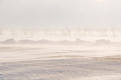 Blizzard and snowstorm. A bad weather on road. Blizzard and snowstorm Stock Photography