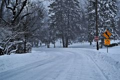 Blizzard Street. Blizzard in Falls Church Royalty Free Stock Photos