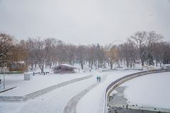 blizzard tempête de neige dans la tempête de neige forte de forêt en parc neige-Co photographie stock