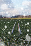 Blizzard on wheat field. Stock Images