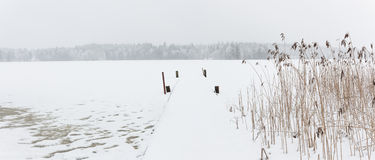 Blizzard winter landscape at frozen lake Royalty Free Stock Photos