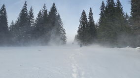 Hikers in blizzard on a winter mountain trail. Group of three hikers on a winter blizzard moment and extreme conditions on a mountain trail Royalty Free Stock Photos