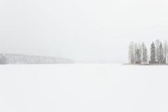 Blizzardwinterlandschaft an gefrorenem See Stockbilder