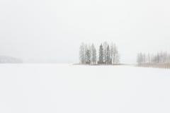 Blizzardwinterlandschaft an gefrorenem See Stockfotos
