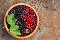 Bllack and red currant and green leaves in wooden bowl. Royalty Free Stock Photography
