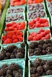 Bllackberries Himbeeren und Blaubeeren Lizenzfreie Stockfotos