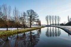 Bloße Bäume reflektiert im Fluss Lizenzfreies Stockbild