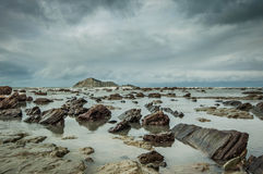 Bloße Insel (Motu-O-Kura) Hawkes Bucht Irgendwo in Neuseeland Stockbilder