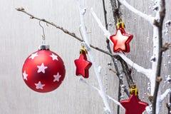 Bloße Niederlassung mit rotem Weihnachtsflitter und -sternen Lizenzfreie Stockbilder