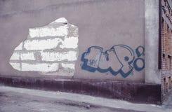 Bloße Ziegelsteine Stockbilder