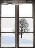 Bloßer Baum in der spärlichen Winterlandschaft Lizenzfreie Stockfotografie