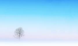 Bloßer Baum in der Winterlandschaft Stockbild