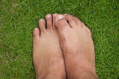 Bloßer Fuß auf grünem Gras Stockbilder