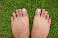 Bloßer Fuß auf grünem Gras Stockfoto