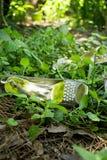 Bloßer Fuß im Wald Lizenzfreies Stockfoto