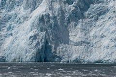 Bloßer Ozeangletscher Stockfotografie