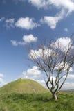 Bloßer Schlosshügel vom langen Hügel Stockfoto