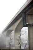 Bloßer Tress unter Brücke im Nebel Stockfoto
