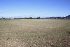 Bloßes Ackerland Stockbild