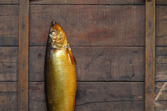 Bloater On Wood Royalty Free Stock Photos