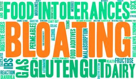Bloating Word Cloud. On a white background royalty free illustration