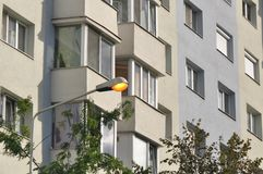 Bloc d'appartements Photo libre de droits