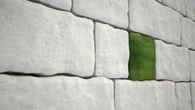 Bloc de vert de mur en pierre Photo stock