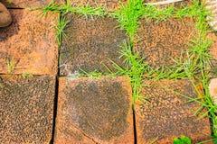 Bloc orange grunge de brique avec la croissance d'herbe entre la fissure du bri photos libres de droits